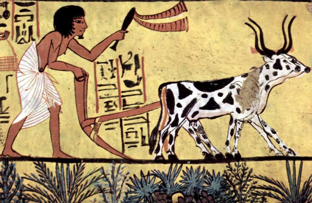 Arando con un yugo de ganado con cuernos en el Antiguo Egipto. Pintura de la cámara funeraria de Sennedjem, c. 1200 AC.